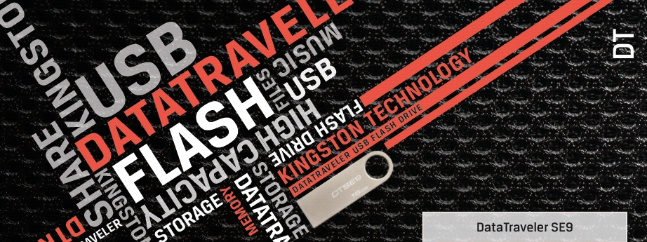 Kingston Technology 8GB Data Traveler Champagne SE9 USB Flash Drive,DTSE9H/8GB