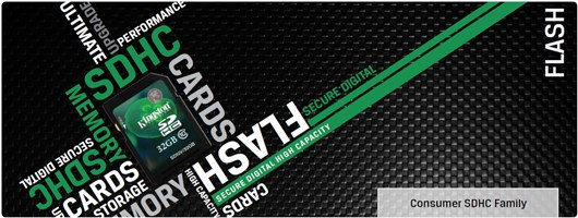 Kingston SD4/4GB 4 GB Secure Digital High Capacity (SDHC) (1 Card/Pack)