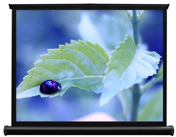 "Pico Genie Portable 50"" Mini Screen"